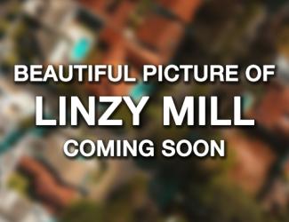 Linzy Mill